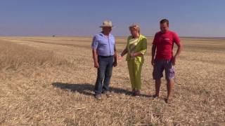 видео МИРАГРО.com - сельскохозяйственный портал. Сельскохозяйственная доска объявлений. Агро-форум.