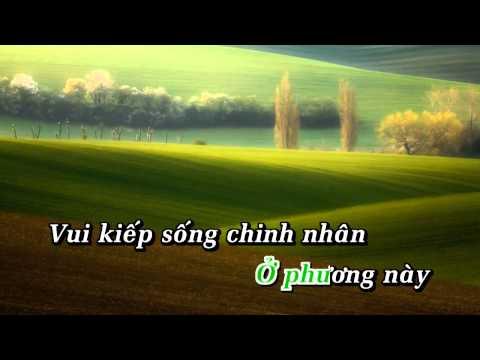 Đêm Buồn Tỉnh Lẻ - Trường Vũ Karaoke Beat