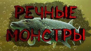 Диалоги о рыбалке в игре 🐟Русская Рыбалка 4🐟 - Турнир на карпа!!:)