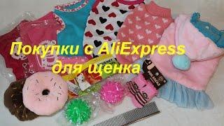 Покупки с AliExpress для щенка йоркширского терьера за декабрь