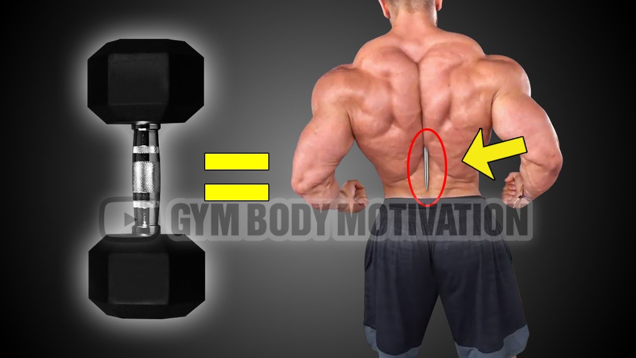 6 Dumbbell Exercises To Build A Big Back