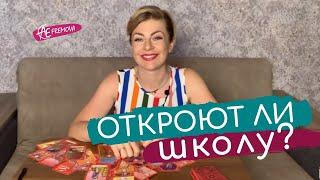 Готовиться ли к 1-му сентября? Открытие садиков, школ, Вузов. Лично или онлайн? Что ждёт Украину ?