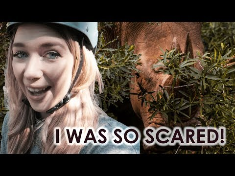 Getting a bit TOO close to nature?! | eSwatini/Swaziland Safari + Canopy Tour