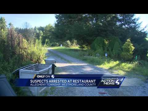 Brother, sister lured into arrest near Allegheny Township restaurant