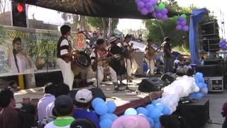 Feria del guarapo Capinota 2014