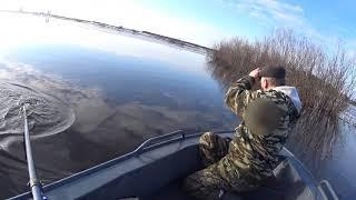 НАКОНЕЦ ТО ВЕСНА Первые дни рыбалки сетями ЛЕЩ в апреле