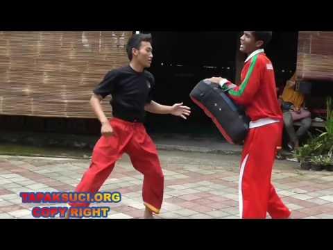 Teknik tendangan pencak silat - TC Team TAPAK SUCI SEMARANG MENUJU JUARA UMUM 1 KEJURKOT 2016