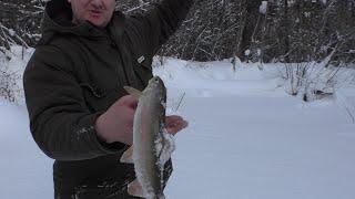 Рыбалка на таежной речушке ТАЕЖНЫЙ ХАРИУС И ЛЕНОК ОТЛИЧНЫЙ ОТДЫХ В ВЫХОДНОЙ