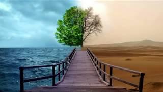 3MT 2019 - Harsimrenjit Singh: The Climate Change Cookbook
