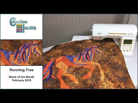 Quilt Block of the Month - February 2018 - Running Free - Collection Inédith