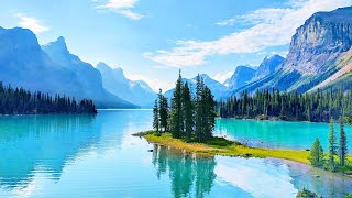 Throw Stress Away with Relaxing Piano Music & Beautiful Nature - Sleep Music & Stress Relief Music