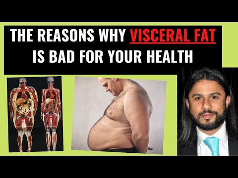 Science of Obesity Why Visceral belly Fat is Bad for you (Pt IV)