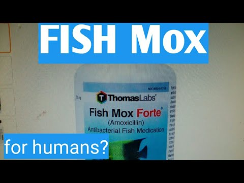 Fish Mox For Humans