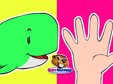 Blue Whale Finger Family | Surprise Eggs, Nursery Rhyme For Kids, Kindergarten & Preschool Song