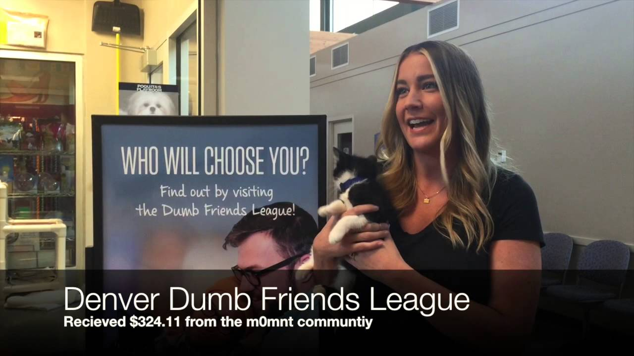denver dumb friends league denver dumb friends league