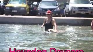 Aquatic K9's Doggy Daycare Brisbane 23  1