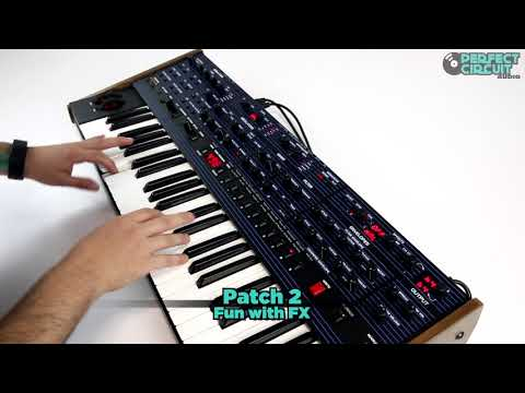 Dave Smith Instruments OB-6 Analog Synthesizer - Sound Design Demo #1