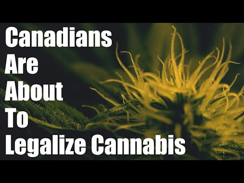 Paving The Way For Legalization Of Cannabis In Canada (GCGG 2017)