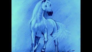 Como desenhar um cavalo - How to Draw A Horse