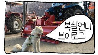 [풀땀농장] 바쁘다 바빠 농촌사회 청년농부 #귀농 브이…