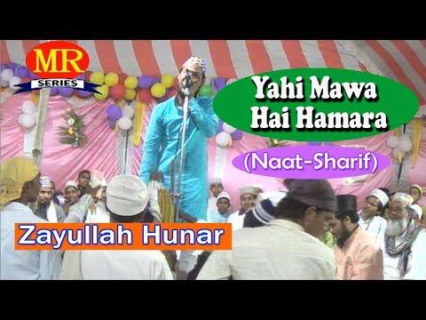 यही मावा है हमारा ☪☪ Zyaullah Hunar ☪☪ Latest Urdu Naat Sharif HD New Video