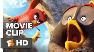 The Angry Birds Movie CLIP - Mighty Eagle Noises (2016) - Jason Sudeikis, Josh Ga Movie HD
