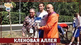 Кленовая аллея l РФС ТВ