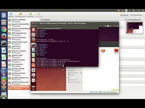 comandos-basicos-linux:-clear,-whoami,-pwd,-echo,-sudo,-su,-tree,-cd,-find