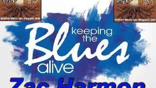 Zac Harmon - From The Root - 2009 - Keep The Blues Alive - Lesini Dimitris Blues