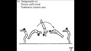 Спортивная гимнастика. Учим темповое сальто назад.