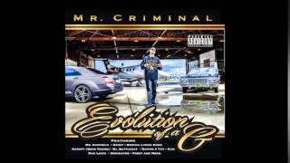 Mr.Criminal - Enter The Criminal Life