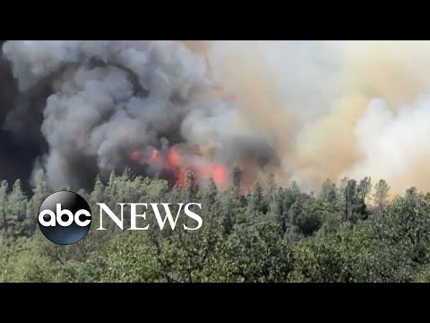 51 large wildfires