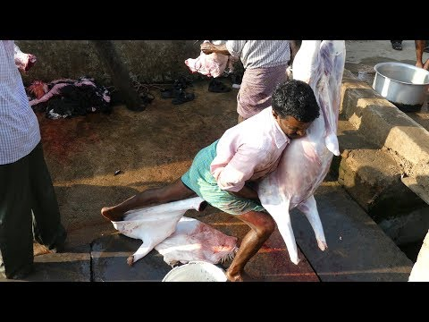 Crazy Style | Full Goat Skin & Meat Cutting Skill |  How to Remove Goat Skin street food
