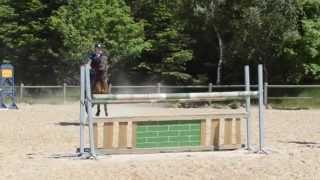 Min nye pony.