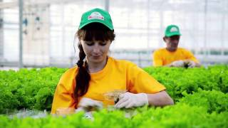 Agroholding Moscow video