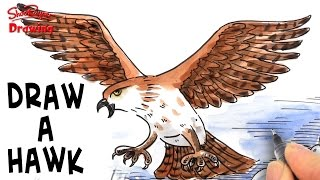 How to Draw an Attacking Hawk