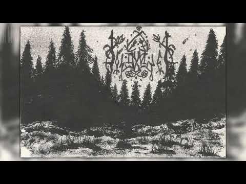 Solitudinem - Promo MMXX (Perdido En El Bosque) (Full demo)