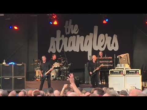 The Stranglers Caerphilly Castle 5/7/19
