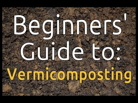 The Comprehensive Beginners Guide To Vermicomposting Set Up Bin More