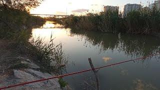 Рыба с нами играла,но всё время мимо проплывала / неудачная рыбалка в Испании.