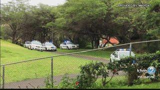 Good Samaritans help Maui police nab mall stabbing suspect