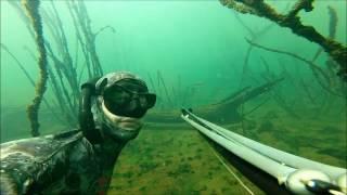 Pesca Sub Rio Grande - Bastante Vida Submersa