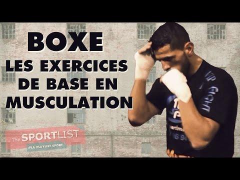 LES EXERCICES DE BASE EN MUSCULATION - Boxe Stan Champion du monde de Full contact