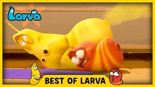 LARVA | BEST OF LARVA | Funny Cartoons for Kids | Cartoons For Children | LARVA 2017 | WEEK 13