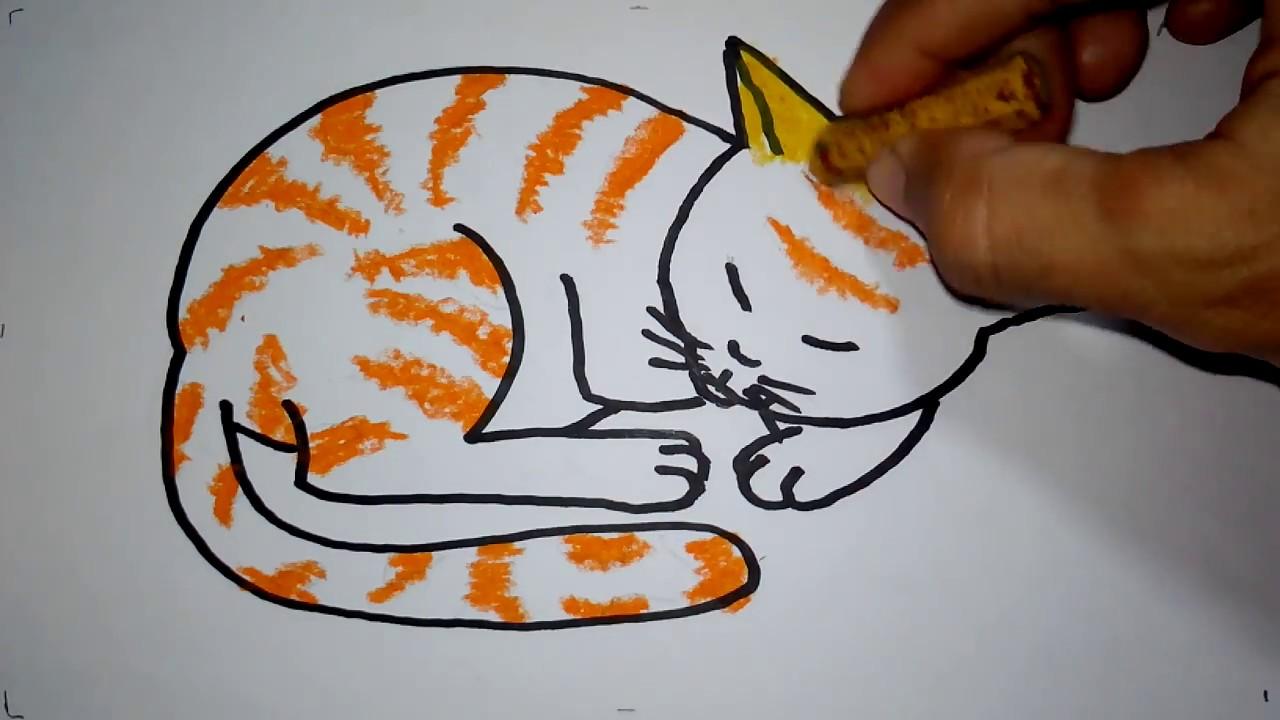 Cara Menggambar Kucing Tidur Untuk Anak Youtube