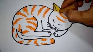 Cara Menggambar Kucing Tidur Untuk Anak