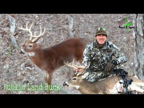 BIG 10 Point BOW KILL | New Jersey PUBLIC LAND