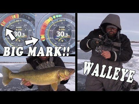 How To Chase BIG Saskatchewan Walleye!!