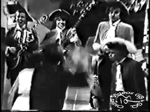 The Barracudas - I Wish It Could Be 1965 Again