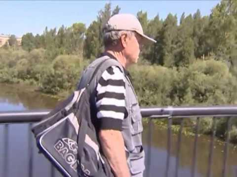 Причины гибели рыбы в реке Вологда устанавливаются
